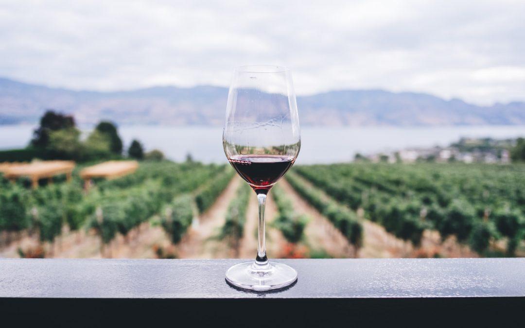 Mangler du rødvin til middagen?