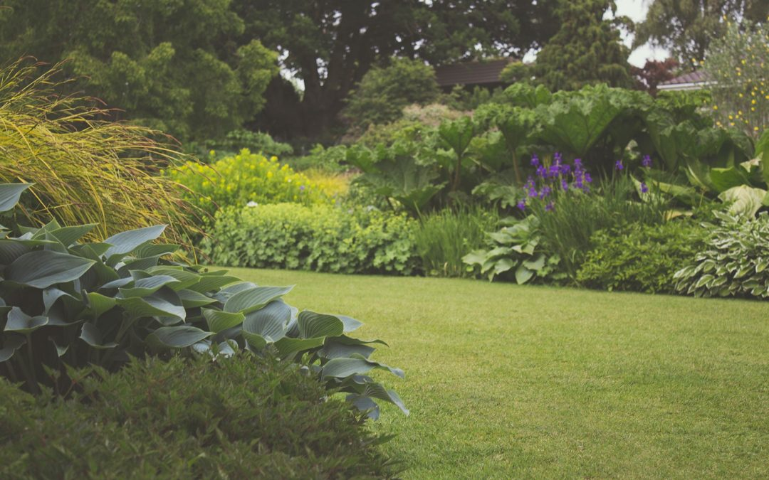 Sådan får du haven til at stråle hele sommeren igennem